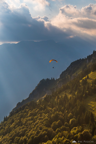 A paraglider above the slopes of Velika planina