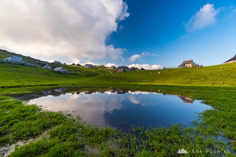 Velika planina on a sunny September afternoon