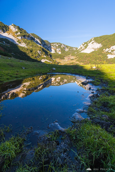 Reflections in a pond at Planina Koren