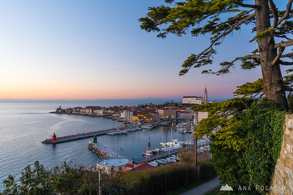 Piran after sunset