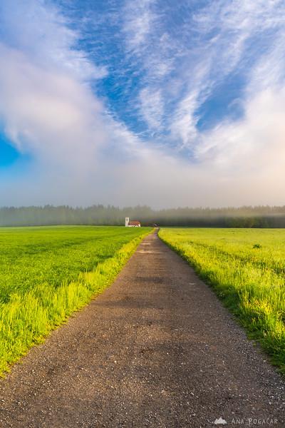 Sunny, misty morning near Hraše