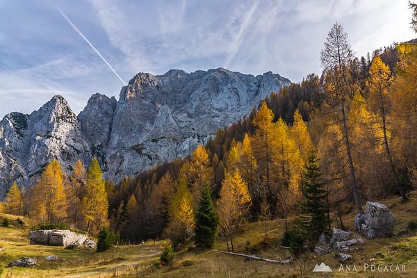 Views near the Erjavčeva hut below Vršič Pass