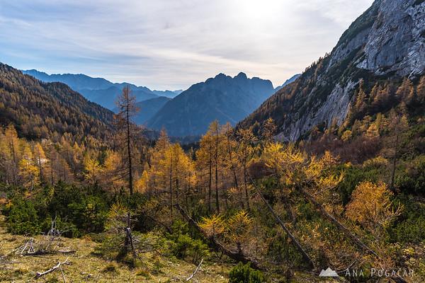 Views from Vršič Pass