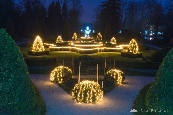Thousands of lights in festive Arboretum