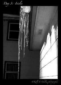 This morning when I stumbled to make coffee, I saw this huge icicle outside the kitchen window. It reminded me of a book I had as a little girl: Forest animals would break off icicles and roll them in snow for a winter treat. I always wanted to try it, but we didn't see many icicles growing up in North Carolina and when they did appear, my Mom wouldn't let me eat them. This icicle reminded me of childhood stories and my Mother - which is kind of cool.
