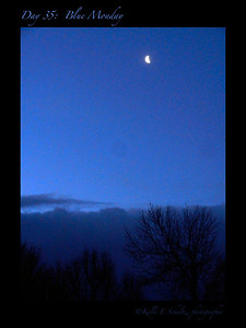 Day 35: Blue Monday I captured this image this morning on the way to work. I like everything about it ~ the moon, the clear sky, the snow clouds on the horizon and the trees. Not bad for an under caffeinated photographer on a Monday morning :)