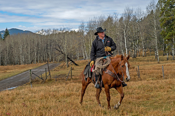 Frank Thomson, a Ranching Lifer.
