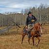 Frank Thomson, a Ranching Lifer.