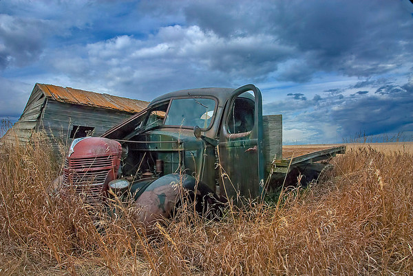 This old truck shows signs of being patched together and then pirated for parts.  It has seen better days but is a perfect model for a photo.