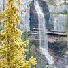 Bridal Veil Falls Close-up