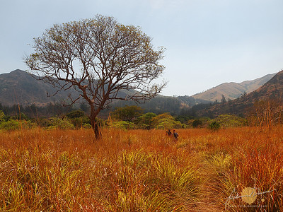Nagsasa Colorful Backwoods - Zambales