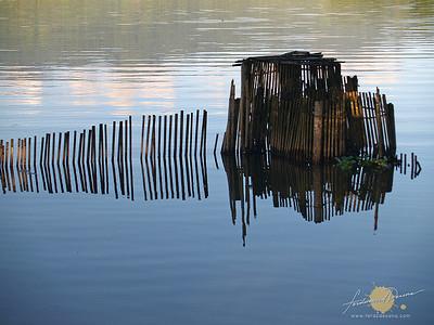Reflections of a Bamboo Fence - Lake Sebu