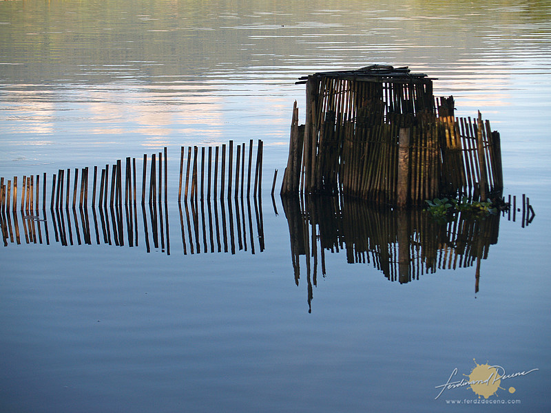 Reflections of a Bamboo Fence - Lake Sebu