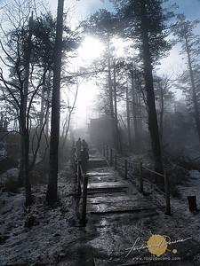 Misty Climb at Emeishan