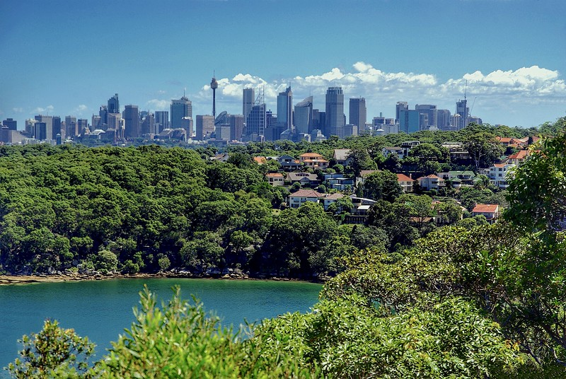 """Urban Sydney with """"the back"""" to the busy city"""