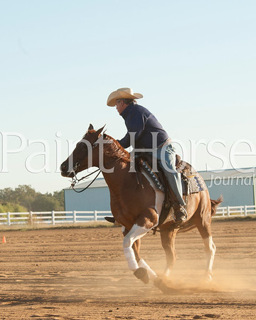 2015 Terry Thompson Reining Horses