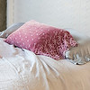 Note: Rose Quartz is a discontinued color. Satin with Venise Lace Pillowcases in Pebble, Silk Velvet Embroidered Standard Pillowcase in Rose Quartz, Linen Duvet Cover in Pebble, Linen Fitted and Flat Sheet in Pebble