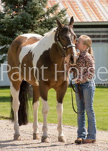 Pelletier Performance Horses 2015