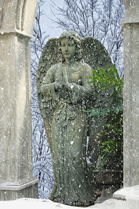 Angel in Winter
