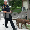 Rob Winner – rwinner@daily-chronicle.com<br /> Sgt. Gary Dumdie, of the DeKalb County Sheriff's Office, helps contain a loose dog at a home in Sycamore on Friday afternoon. <br /> 07/03/2009