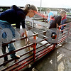 Rob Winner – rwinner@daily-chronicle.com<br /> During the 4-H Fair at the Sandwich Fairgrounds on Saturday morning, siblings Lexi Hanson (left), 10, and Blake Hanson, 8, of DeKalb, hop out of a pen after washing two of their pigs.<br /> 08/01/2009
