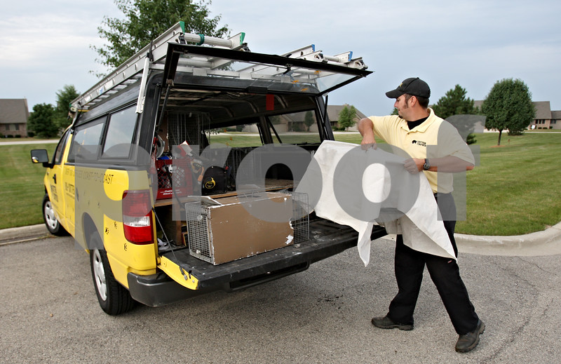 Rob Winner – rwinner@daily-chronicle.com<br /> Andy Faber of Northern Illinois Critter Control does business in five counties including DeKalb. Faber uses live traps about 99% of the time to capture animals such as raccoons and squirrels.<br /> 08/07/2009