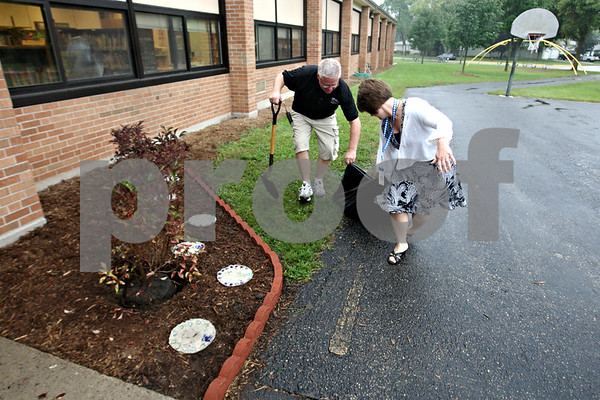 Rob Winner –  rwinner@daily-chronicle.com<br /> Bruce Luchsinger, head custodian, and Cristy Meyer, principal, work together to plant the last of three lilac plants in front of Lincoln Elementary School in DeKalb on Tuesday morning. The lilac garden was planted in honor and memory of Christina Setchell, a dedicated parent and friend of the school.<br /> 09/19/2009
