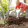 Beck Diefenbach  -  bdiefenbach@daily-chronicle.com<br /> <br /> Pat Daly spreads mulch in one of his gardens in the backyard of his DeKalb home on Wednesday June 10, 2009. Daly is one of seven winnings of DeKalb's new Yards of Distinction.
