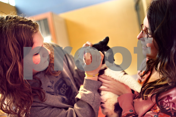 Beck Diefenbach  -  bdiefenbach@daily-chronicle.com<br /> <br /> Volunteers Cassie Ameiss (left), 17, and Tylan Hoffman, 13, administer ear medication to a cat at the Tails Humane Society in DeKalb, Ill., on Monday March 30, 2009.