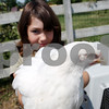 Rob Winner – rwinner@daily-chronicle.com<br /> Colleen Dow, 10, of Sycamore holds up one of her nine chickens. Dow has started her own business selling eggs which she has named Fly Away Eggs.<br /> 08/06/2009