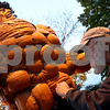 "ROB WINNER | Chronicle News Group<br /> Lynden Bute, of Sycamore, finishes piecing together ""The Incredible Pumk"" at Pumpkin Festival in Sycamore on Wednesday evening.<br /> 10/22/2008"