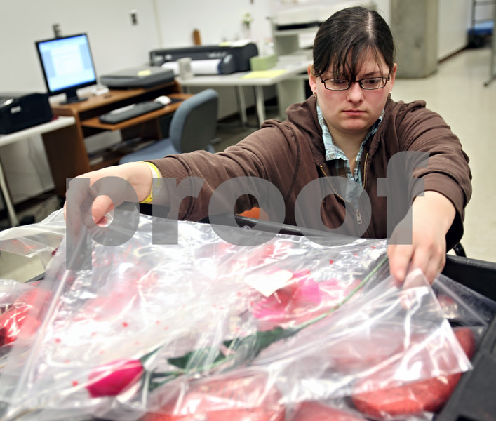 Beck Diefenbach  -  bdiefenbach@daily-chronicle.com<br /> <br /> In preparation for an exhibit marking the one year anniversary of the shootings,  Annie Oelschlager, staff member of the regional history center, catalogs Feb. 14th artifacts at the Northern Illinois University's Founder's Memorial Library in DeKalb, Ill., on Thursday Feb. 5, 2009.