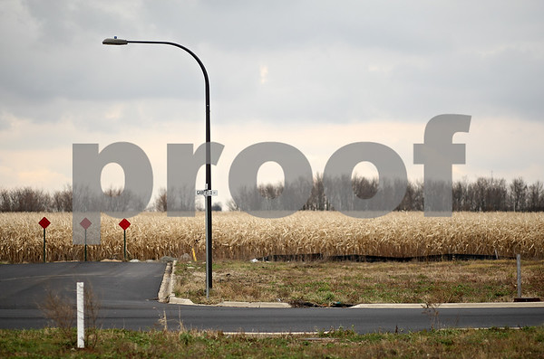 Beck Diefenbach  -  bdiefenbach@daily-chronicle.com<br /> <br /> A lone streetlight stands above a vacant street which ends at a corn field in the Greenfield Ridge subdivision in Waterman, Ill., on Wednesday Nov. 18, 2009.