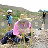 Rob Winner – rwinner@daily-chronicle.com<br /> Char Burgess of Sycamore looks through a pile of rocks in search of fossils at the Vulcan Materials quarry in DeKalb on Saturday morning. Burgess and about two dozen other amateur fossil hunters participated in the fossil dig.<br /> 08/08/2009