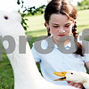 Rob Winner – rwinner@daily-chronicle.com<br /> <br /> Grace Wilson, 9, feeds her ducks and geese at her Sycamore home on Friday July 9, 2010. New duck crossing signs used to alert drivers have been put up near the parking lots by Lowe's and Walmart in DeKalb after Wilson wrote a persuasive essay about the need for them.