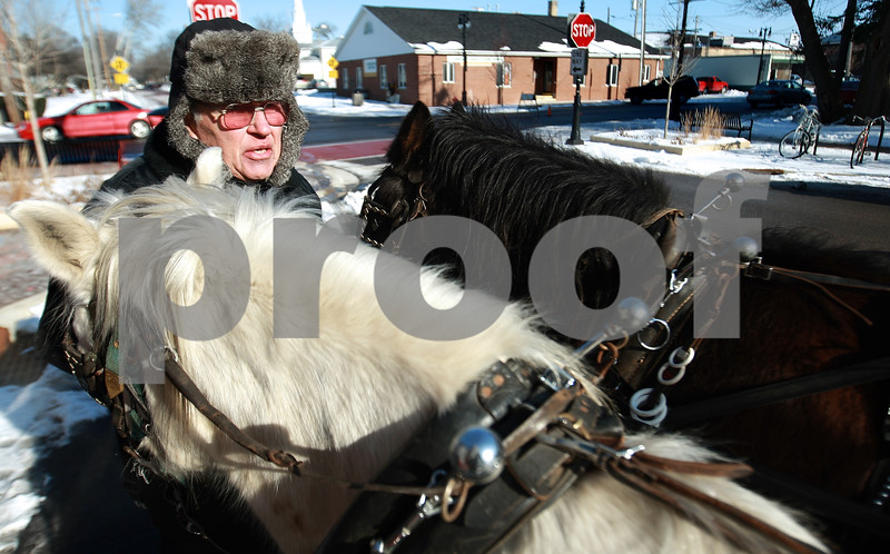 Kyle Bursaw – kbursaw@daily-chronicle.com<br /> <br /> John Hart, owner of the horses, readies them for the next carriage ride around downtown DeKalb on Saturday, Dec. 18, 2010.