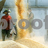 Alex T. Paschal - Sauk Valley News<br /> <br /> Rescuers work at the scene of three men trapped in a grain bin at Consolidated Grain and Barge in Mount Carroll. Holes were cut into the side of the 500,000 bushel bin and pumped away to trucks and moving equipment.