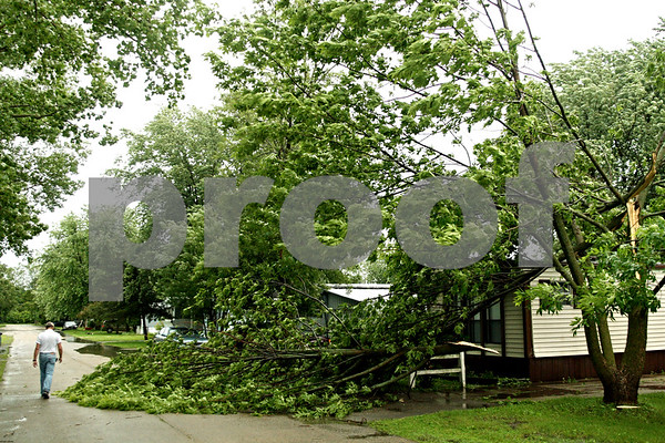 Beck Diefenbach  -  bdiefenbach@daily-chronicle.com<br /> <br /> Large branches cover the front lawn of a home at Evergreen Village in Sycamore, Ill., on Friday June 18, 2010