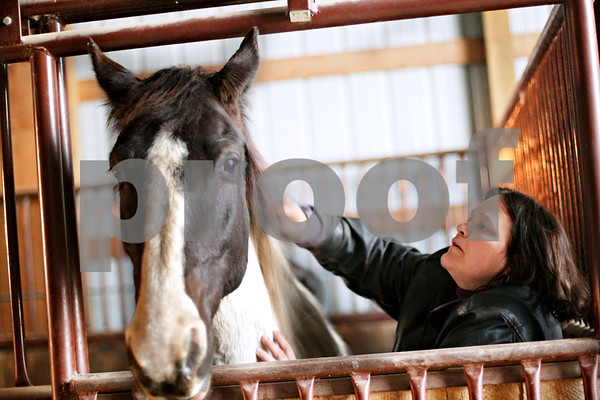 """Beck Diefenbach - bdiefenbach@daily-chronicle.com<br /> <br /> Debbie Kirby, of Cortland, grooms her horse Cierra at Runaway Ranch in Sycamore, Ill., on Tuesday March 9, 2010. Despite feeling the strains of the down economy, Debbie would rather cut her personal budget than lose her horse. """"It's like having a boyfriend or girlfriend,"""" she said. """"You make adjustments."""""""