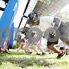 Rob Winner – rwinner@daily-chronicle.com<br /> <br /> Brandon Banks runs through drills with his teammates during the Barbs' first practice on Wednesday August 11, 2010 in DeKalb, Ill.