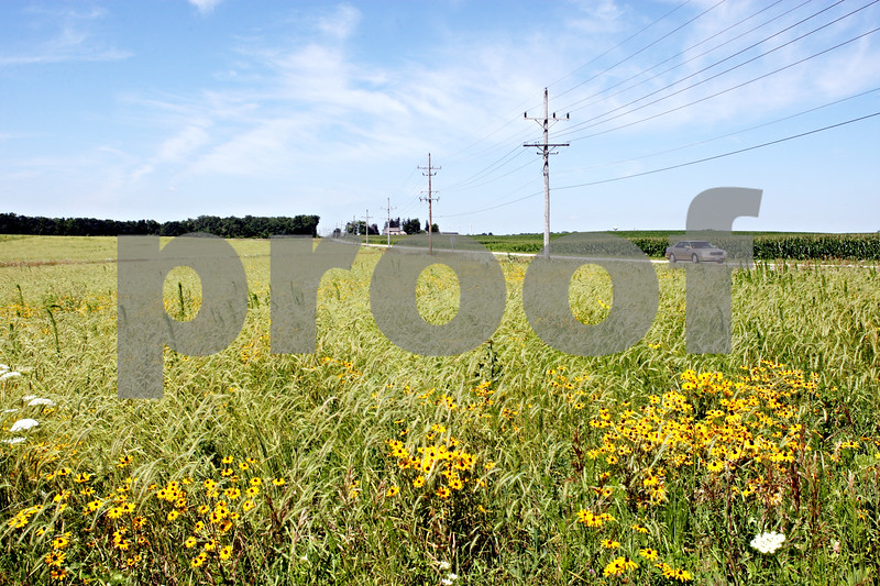 Rob Winner – rwinner@daily-chronicle.com<br /> <br /> Land located at the southwest corner of University Road and Preserve Road in Shabbona, Ill. which is covered with prairie plants remains undeveloped.<br /> <br /> Friday July 9, 2010