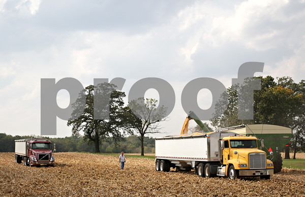 Beck Diefenbach – bdiefenbach@daily-chronicle.com<br /> <br /> Kernels are moved to a semi-trailer truck after being harvested by Paul Rasmussen in Sycamore, Ill., on Tuesday Sept. 21, 2010.