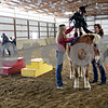 Rob Winner – rwinner@daily-chronicle.com<br /> On Wednesday January 13, 2010, Maya Townsend, 3 of Geneva, stands on top of Chaves, a  therapy horse, during a hippotherapy session at Blazing Prairie Stars in Maple Park, Ill. By standing up, Maya learns what walking feels like.