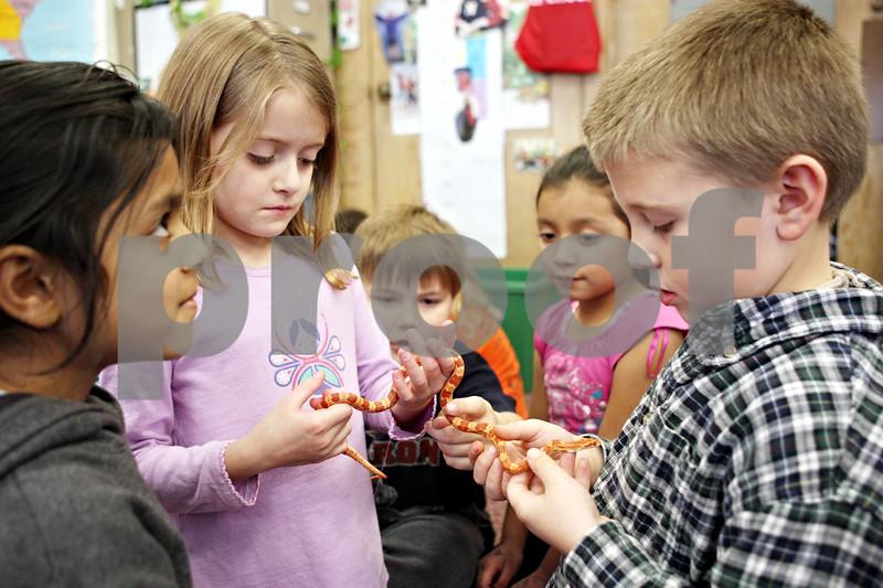 Rob Winner – rwinner@daily-chronicle.com<br /> <br /> First grade students Antoinette Leblanc (left) and Evan Braffett, of Jefferson Elementary School in DeKalb, hold a corn snake on Monday afternoon in Cindy Warren-James' classroom.