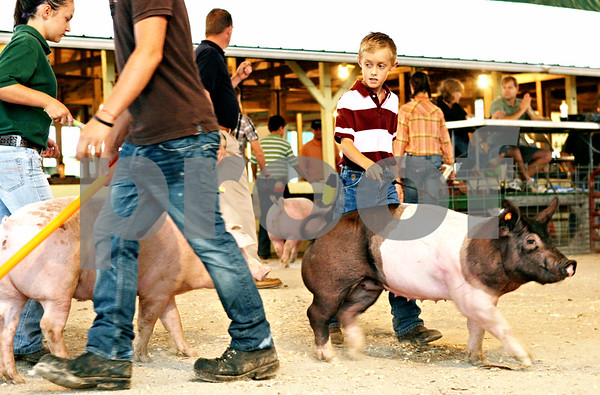 Rob Winner – rwinner@daily-chronicle.com<br /> <br /> DeKalb resident Blake Hanson, 9, guides his entry in the light weight gilt class during judging of the swine show at the 4-H Livestock Fair at the Sandwich Fairgrounds in Sandwich, Ill. on Saturday July 31, 2010.