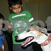 Caitlin Mullen – cmullen@daily-chronicle.com<br /> <br /> Dimitri Diyadawagamage, 3, and Tyler Elementary first grader Malachi Ball, 7, both of DeKalb pet Honey, author Craig Pierce's 5-year-old greyhound at Tyler Elementary Wednesday. Pierce, a Genoa resident who has written five childrens books in his American Dog series about working dogs, spoke to students at the school Wednesday as part of Family Reading Night.