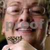 Rob Winner – rwinner@daily-chronicle.com<br /> <br /> Pastor Sandi Graber, of Waterman Presbyterian Church, holds a painted lady butterfly (Vanessa cardui) in her office on Thursday March 25, 2010 in Waterman, Ill. Graber will incorporate the butterflies into her Easter sermon.