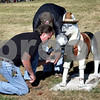Kate Schott – kschott@daily-chronicle.com<br /> <br /> Staff from the Northern Illinois University Maintenance Department reinstall Media Hound on Friday morning. The fiberglass dog, a part of Huskies on Parade, was stolen in July. It was found a few days later.