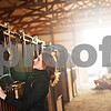 Beck Diefenbach - bdiefenbach@daily-chronicle.com<br /> <br /> Barn manager Abbie Jossart grooms Beau before giving a riding lesson at Runaway Ranch in Sycamore, Ill., on Tuesday March 9, 2010. Teaching riding lessons helps Jossart pay the costs for owning her own horse.