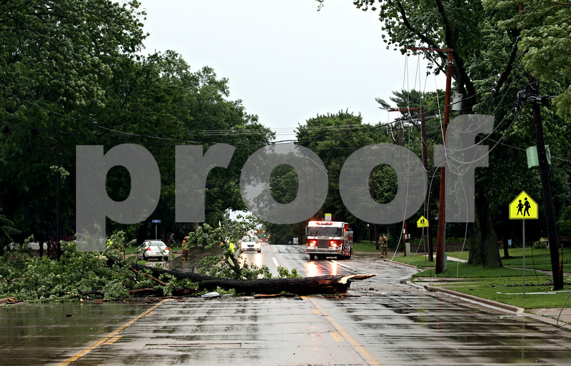 Rob Winner – rwinner@daily-chronicle.com<br /> <br /> A fallen tree branch on State Street in Sycamore, Ill. took down power lines shutting down the street to traffic on Friday June 18, 2010.